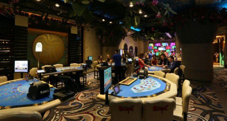Дума о казино европейская лайв live рулетка онлайн