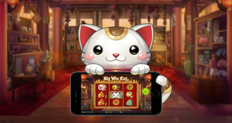 Play'n GO представила слот Big Win Cat в новой для себя тематике