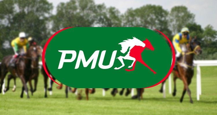 Картинки по запросу PMU