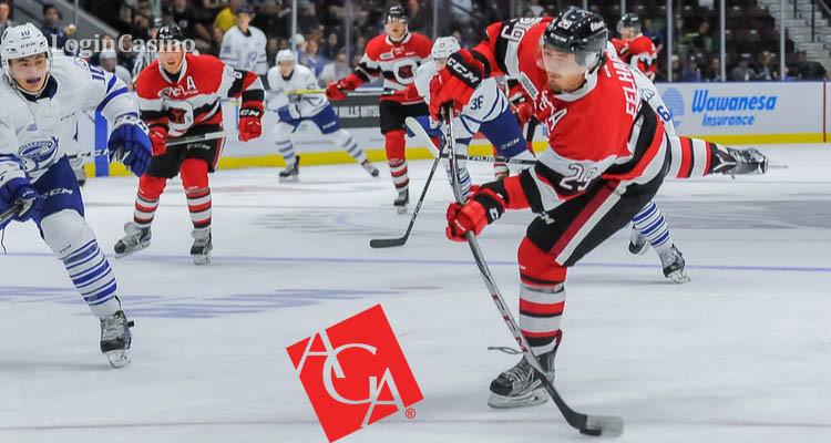 Спортивный беттинг может принести дополнительные доходы НХЛ