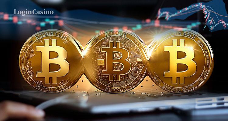 Казино на биткоины с кнопкой азартные игровые автоматы играть онлайнi