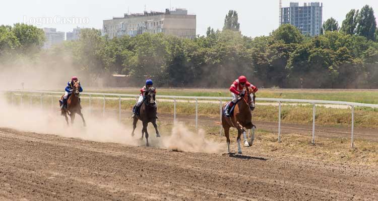 конный спорт не относится к основным видам спортивной деятельности