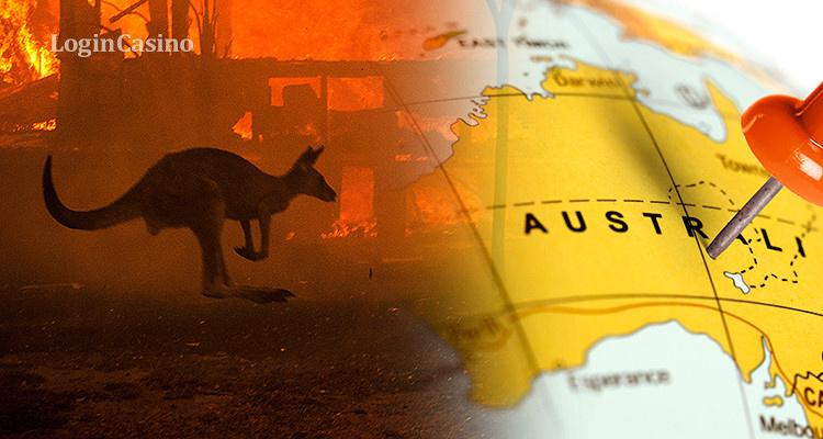 Пожары в Австралии: участница WPT провела сбор пожертвований на помощь животным