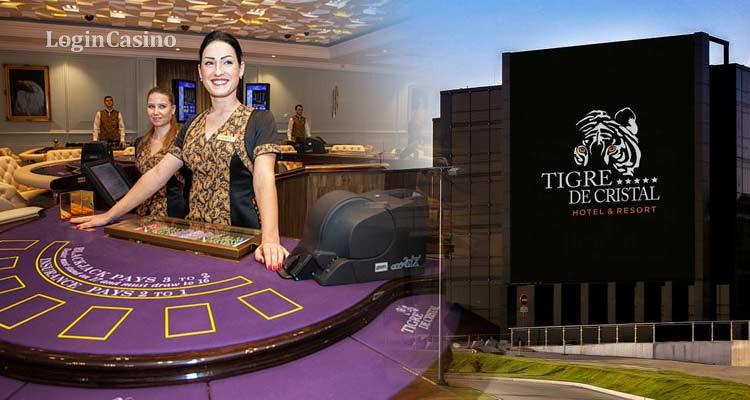 Преобладающая часть посетителей казино в Приморье – жители РФ