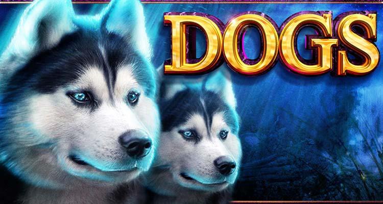 Все игровые автоматы про собак игровые автоматы демо с кредитом 5000 играть