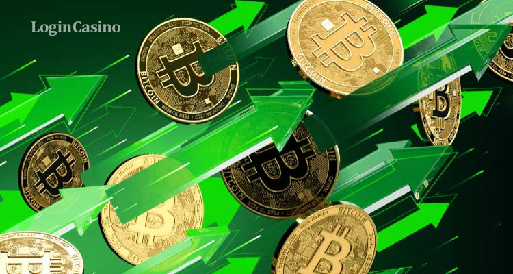 Стоимость биткоина в долларах на сегодня движется к $10 200 за 1 BTC – данные криптобиржи