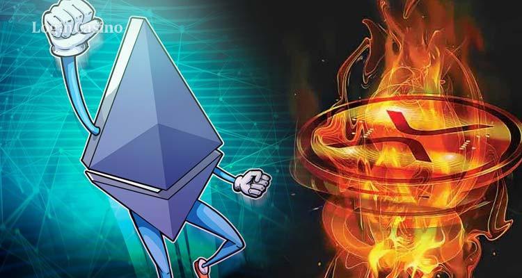 Ethereum бьет рекорд, XRP – тоже, но по падению цены