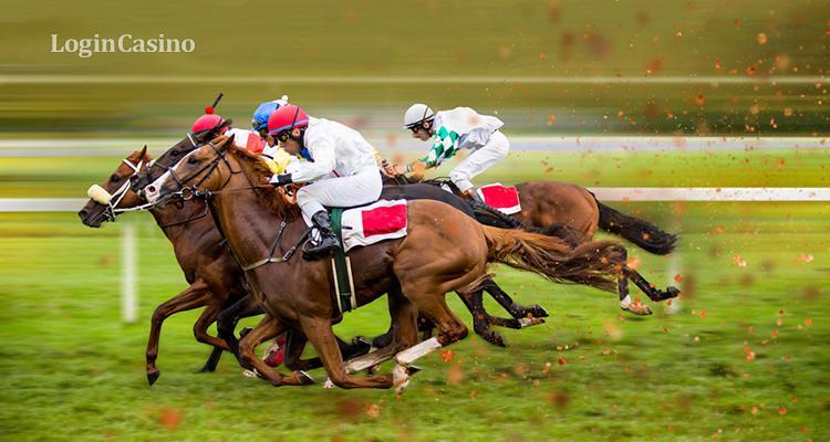 онлайн лошадях ставки скачки на